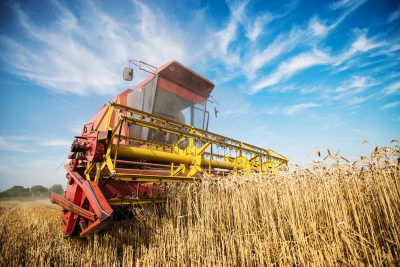 Recrutement industrie agroalimentaire