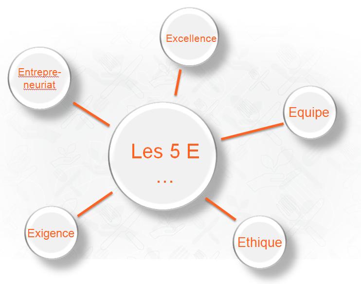Methode 5E